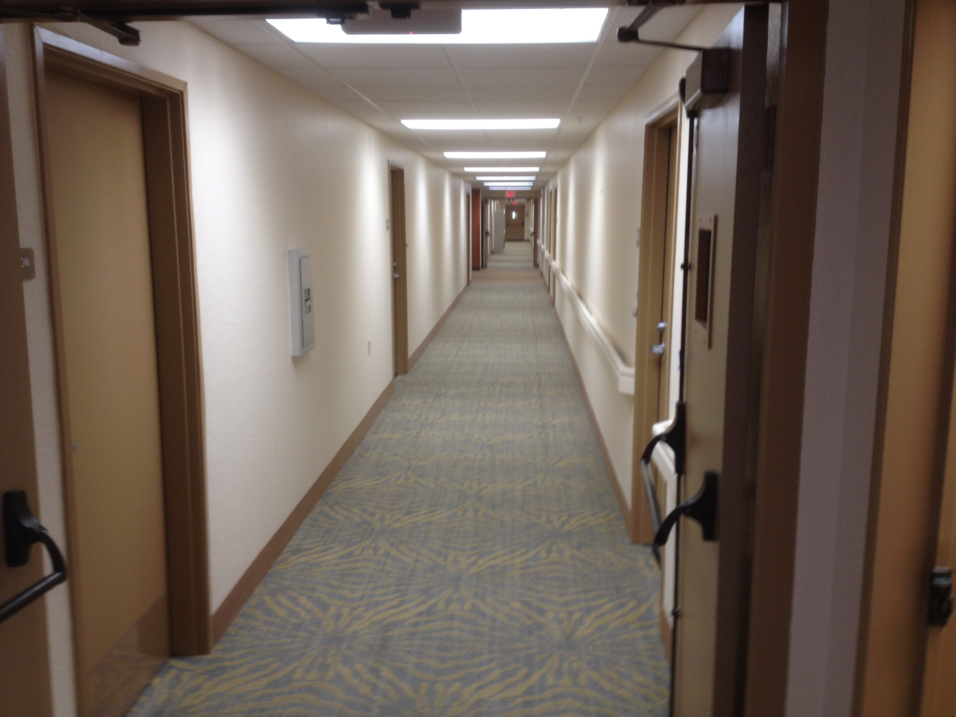 Dormitory Hallway Photo Showcasing White Painted Walls and Brown Painted Door Colors